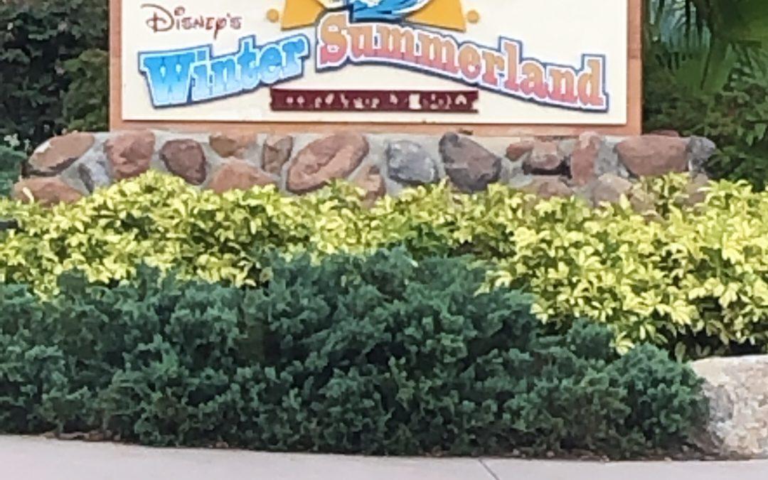 Blizzard Beach And Disney Springs